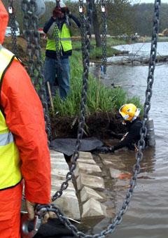 diver assist with concrete reinforcements