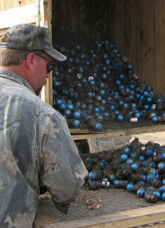 sorting UXO grenades as part of military range clearance
